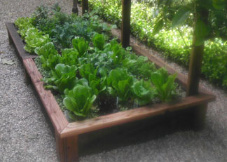 Garden Box Installation